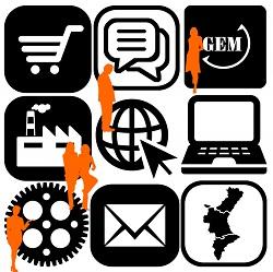 Global Entrepreneurship Monitor. Informe ejecutivo 2017. Actividad emprendedora en la Comunidad Valenciana