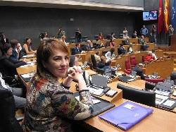 El opaco Parlamento de Navarra