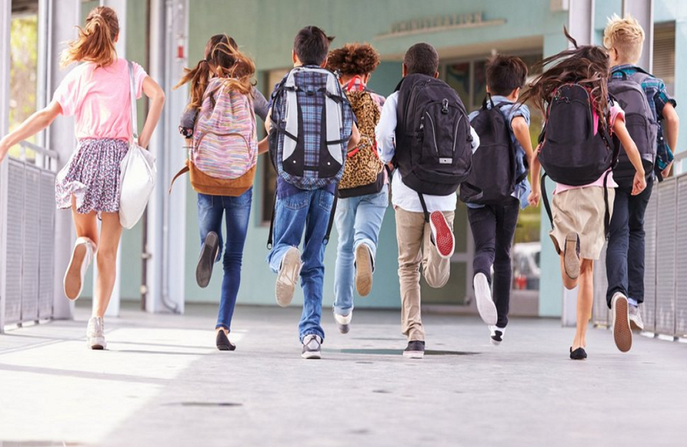 El abandono escolar en Navarra: seguir estudiando no es progresista  navarraconfidencial.com